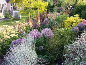 Perennial Garden 2