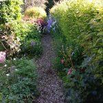 Perennial Garden 3