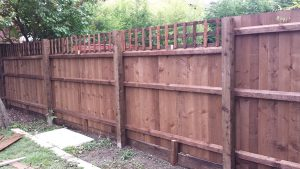 Close boarded fence & Trellis