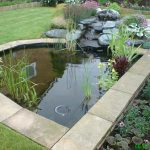 Pond Water feature 2