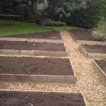 Wooden Veg Beds