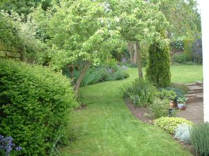 Garden Maintenance 5